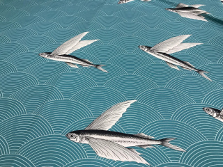 flying_fish_nevozmozhnoe_vozmozhno_15
